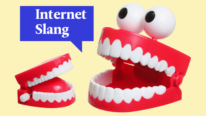 Everything You Always Wanted to Know About Internet Slang