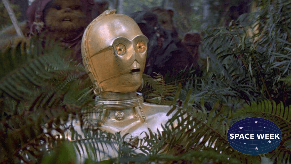 C-3PO, a droid who is technically also a universal translator