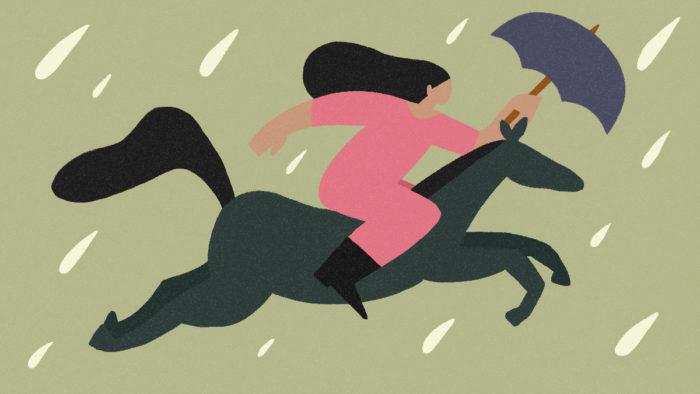 cavalo na chuva