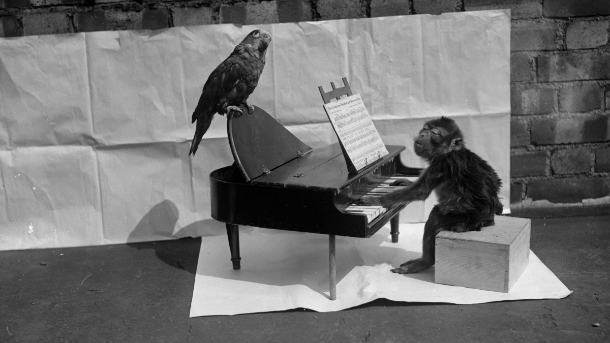 1920s Slang represented by a small monkey playing a tiny piano, while a bird accompanies him while also sitting on the piano.