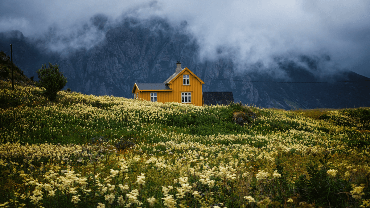 remote orange cabin in a field in norway against foggy mountains why learn norwegian