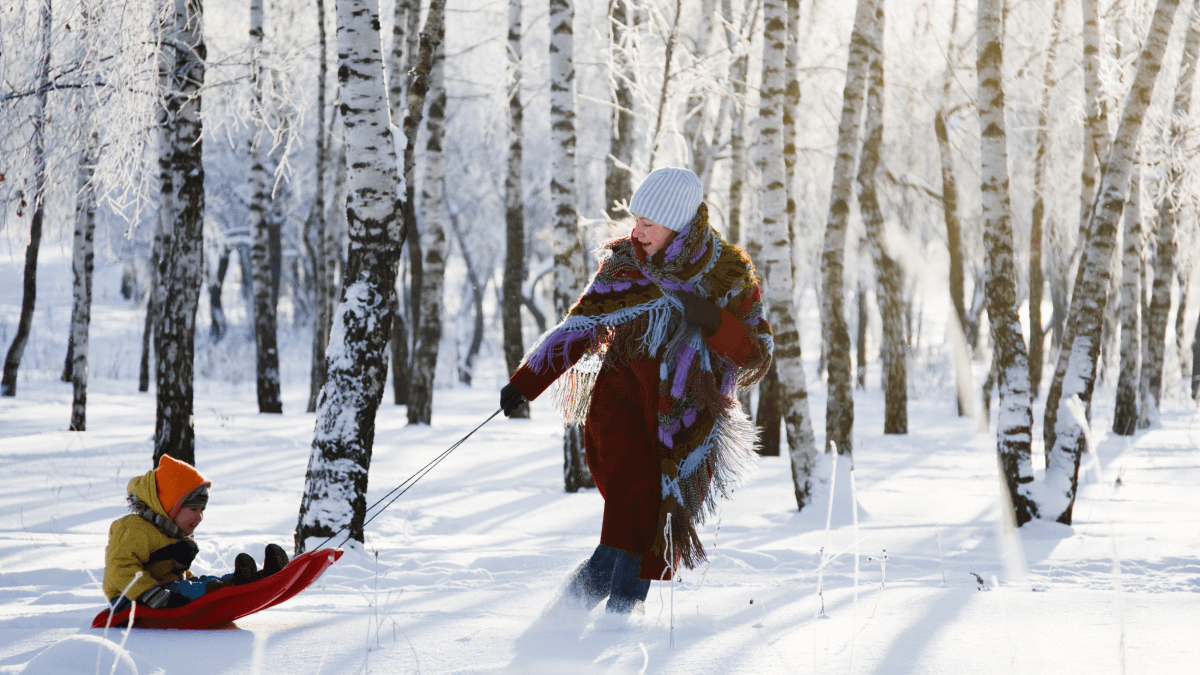 mother pulling child in sled in snowy birch forest family in norwegian