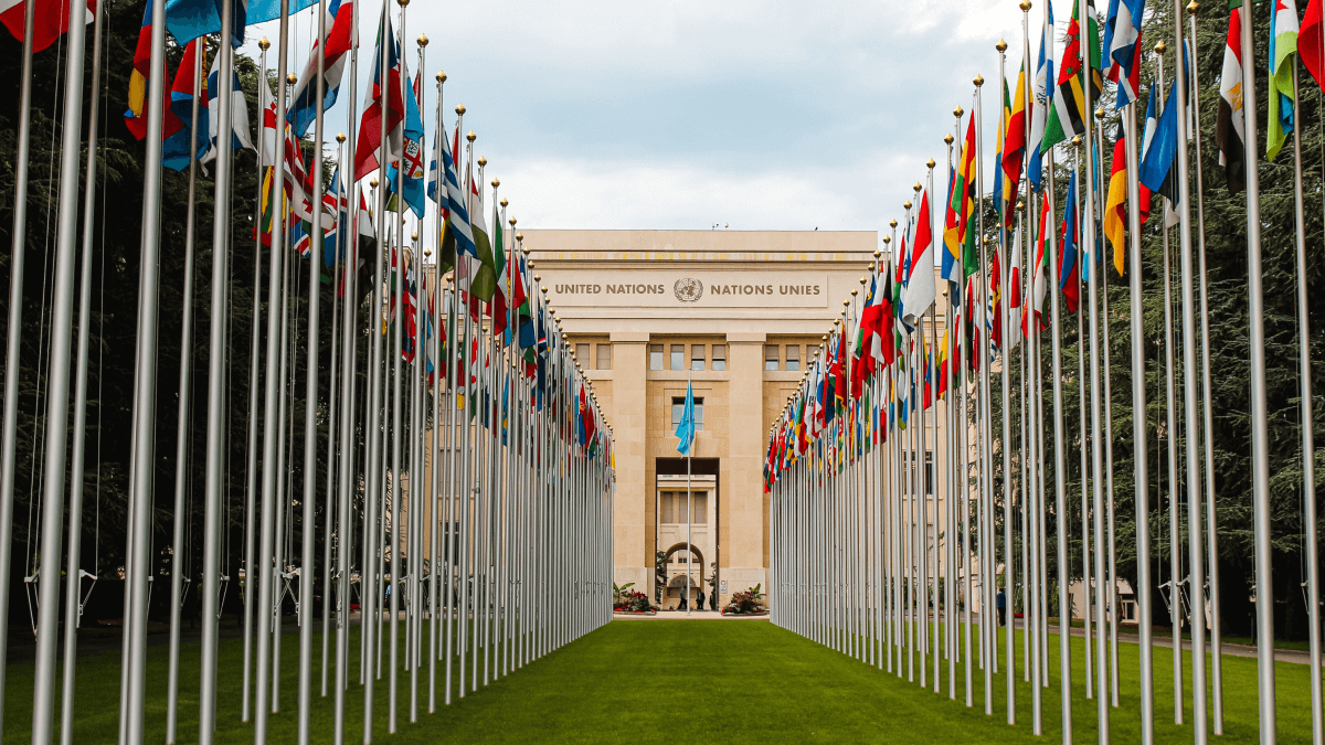 The Universal Declaration of Human Rights represented by a photo of the United Nations building in France, framed on both sides by dozens of flags from all the member states.